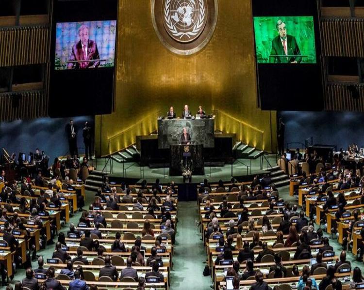 Plenária com fileiras de cadeiras onde pessoas estão sentadas, voltadas para uma mesa sobre o palco