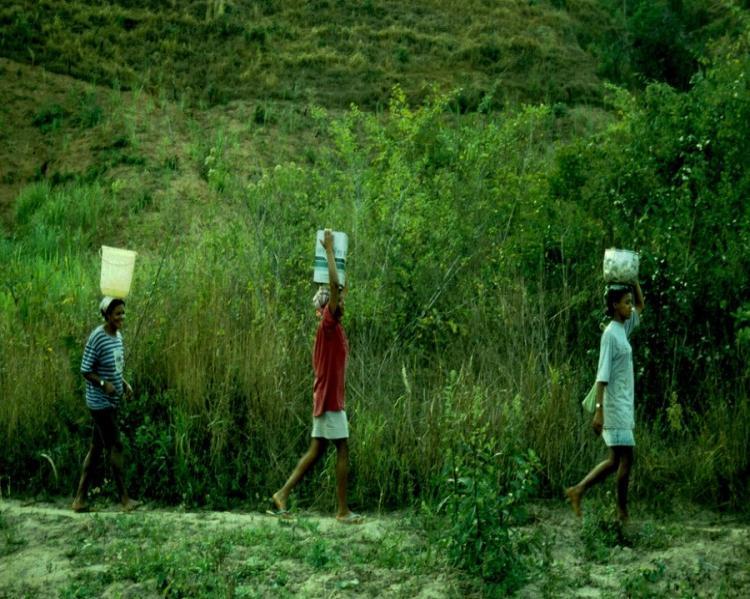 três mulheres enfileiradas caminham com latas d´'agua na cabeça, tendo uma vegetação verde ao fundo