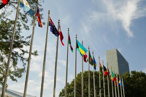 Bandeiras de países-membros das Nações Unidas a céu aberto